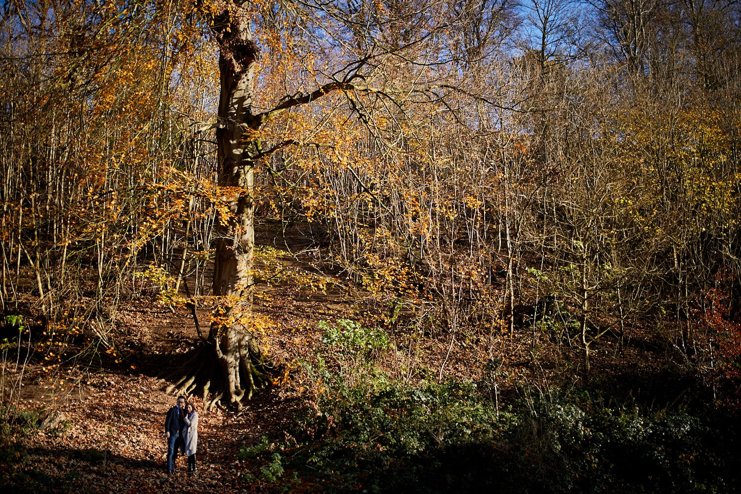 A beautiful couple pose against a winter backdrop of fallen leaves at at Hubbards Hills, Louth, Lincolnshire