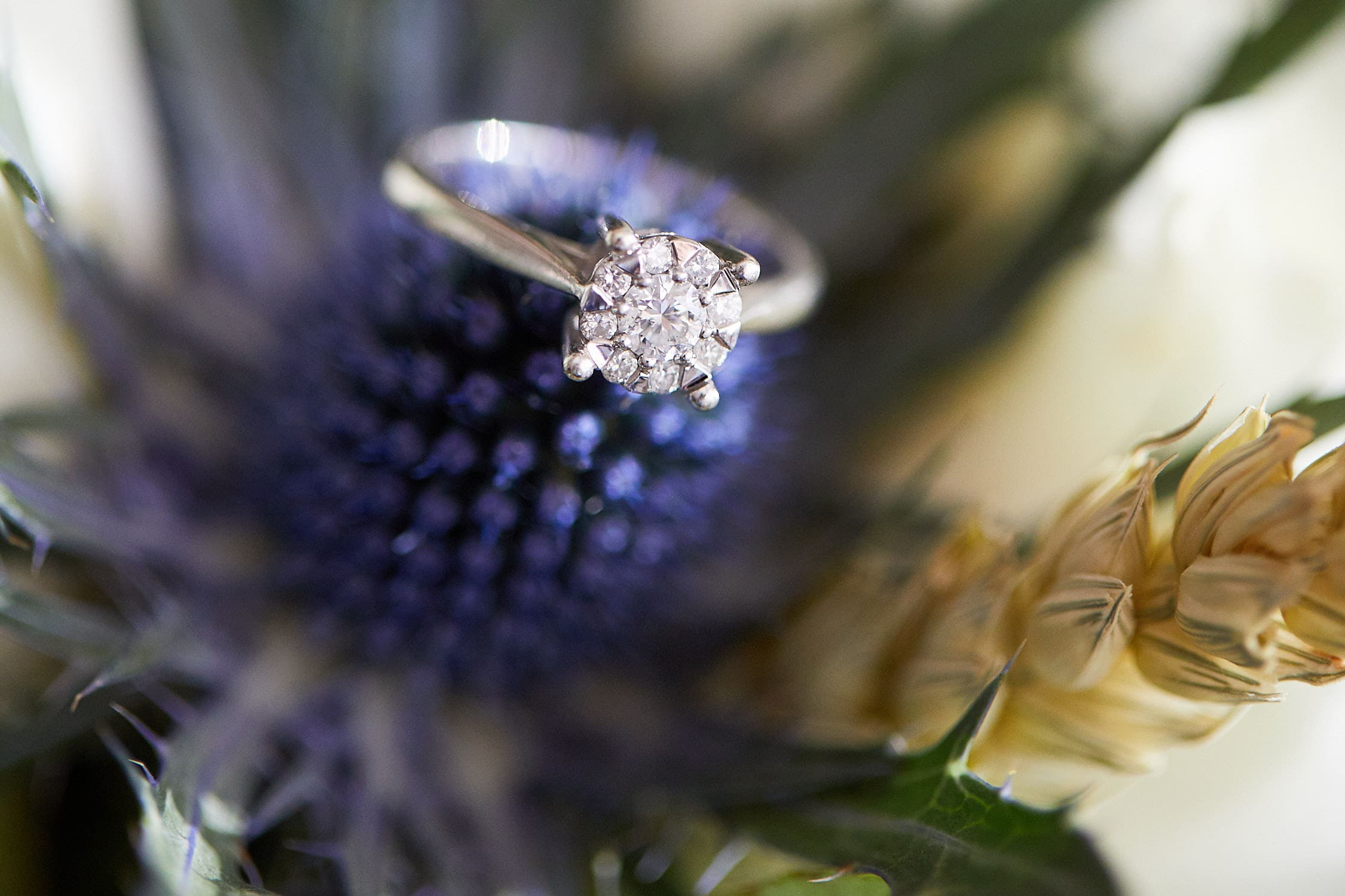 A diamond engagement ring placed amongst flowers