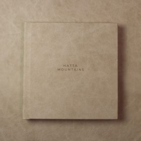 A single leather covered wedding album
